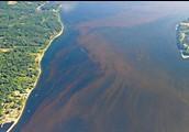 coastalscience.noaa.gov