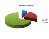 Case Count by Priority Level