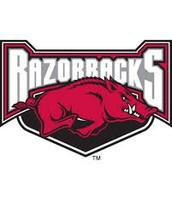 #2. University of Arkansas