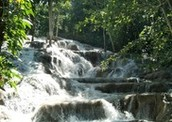 go to Dunn River Falls