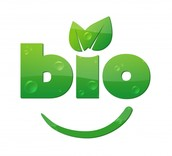 How is Bio energy produced?