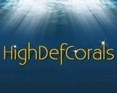 High Def Corals