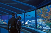 The journey to Underwater world