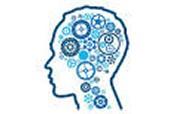 Brain Assessments