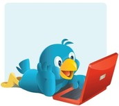 Twitter: Embrace it for Professional Learning - by Denise Scavitto, Teacher