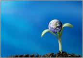 Environmental Trends