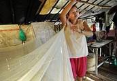 Mosquito Nets