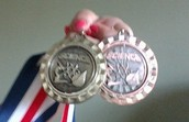 Science fair medals from district 86