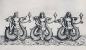 Mermaid Version of Sirens