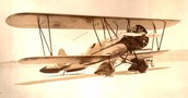 The Wright brothers invented the first airplane