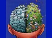 Brain pic 2
