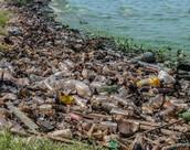 זיהום הסביבה