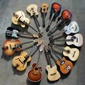 The Guitar Family