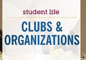 Some clubs are :