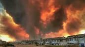 Brampton men bring relief to Fort McMurray firestorm evacuees