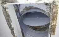 Fungus and Mold Infect Your Air Ducts