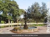 El parque el Olivar