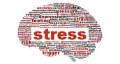Stress!!!!!