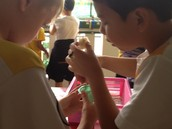 Gavin & Rafael measuring the nutrients
