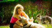Si želite s psom na pasjo avanturo v naravi?