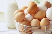 Un Oeuf-Eggs
