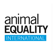 AnimalEquality (Animal Rescue Shelter)