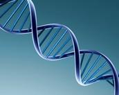 Definición de ADN.