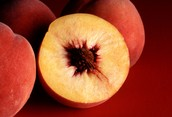 The peach is the state fruit