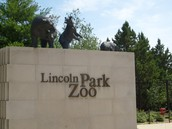 Lincol Park Zoo