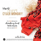 Cyber Monday offer