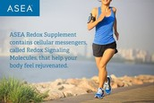 Increases Endurance and Recovery by 29%