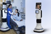 Human Function/Task the Robot performs