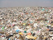 How unsanitary a landill is...and what the Earth will look like in the future if we don't do something about it...