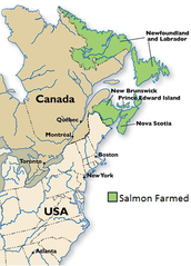 Where Salmon is Farmed