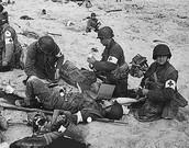 Normandy Casualties