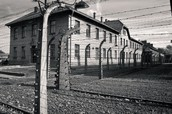 Barbed wire fence that surrounded Auschwitz
