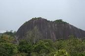 The Julian-top Mountain
