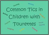 Types of tics