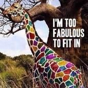 A colorful Giraffe