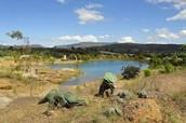 Gondava: El gran valle de los dinosaurios