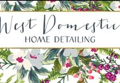 Start 2016 Off Feeling Refreshed! West Domestic Offers Home Detailing! Green Products!