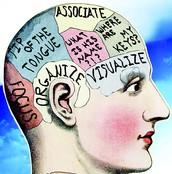Ya Brain's important!