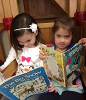 Picture Reading in the Preschool Library