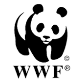 WWF is Helping the Bison!
