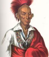 """Black Hawk leader of the Sauk and Fox"""