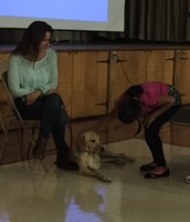 Marshall the Miracle Dog Assembly