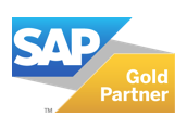 Why SAP Business One?