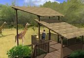 Help  Bring Giraffes to Lehigh Valley Zoo