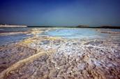ים המלח ומעיינותיו