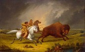The Caddo Hunting